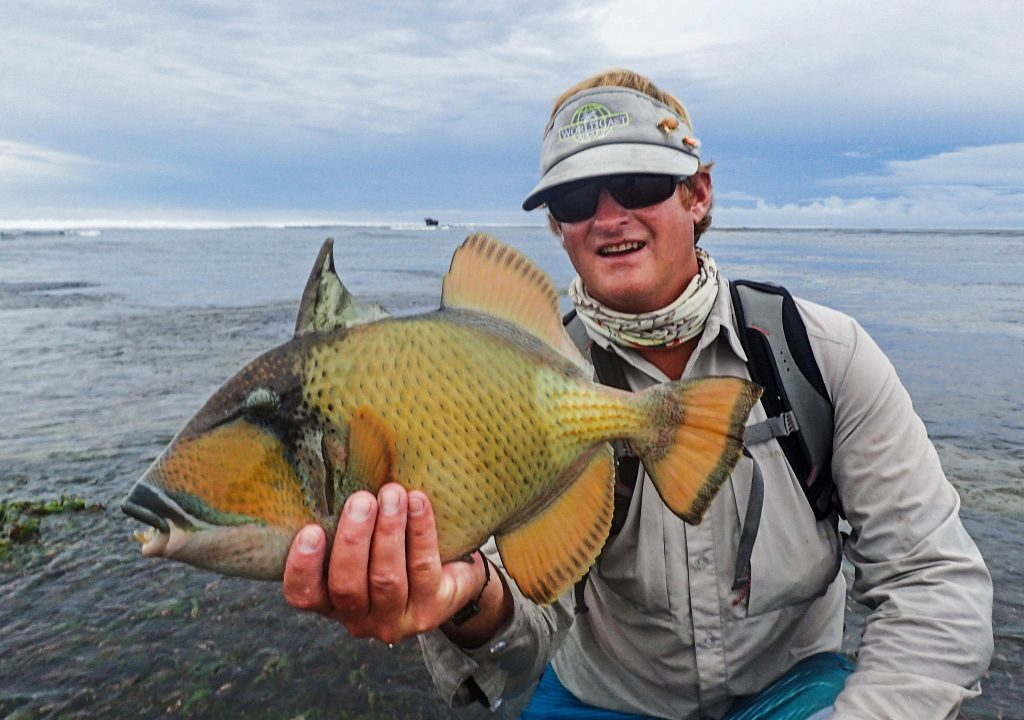 Alphonse Island Seychelles Trip Report 2015