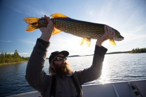 Selwyn Lake Lodge Saskatchewan - Pike Fly Fishing