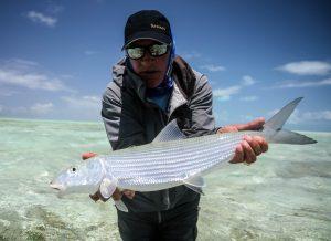 St. Brandon's Atoll - Indian Ocean Trip Report 2017