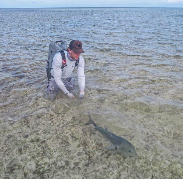 Providence Atoll Fly Fishing